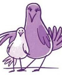 Purple Dove Media