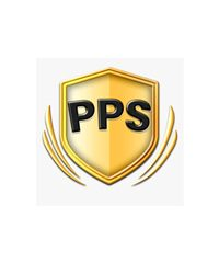 Professional Protection Security