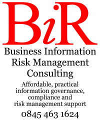Business Information Risk Management Consulting